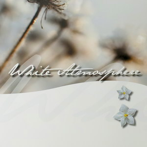 Коллекция штор плиссе WHITE ATMOSPHERE